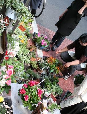花ギフト|フラワーギフト|誕生日 花|カノシェ話題|スタンド花|ウエディングブーケ|花束|花屋|erabu