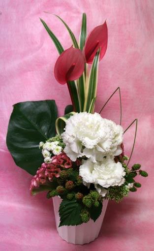 花ギフト|フラワーギフト|誕生日 花|カノシェ話題|スタンド花|ウエディングブーケ|花束|花屋|IMG_8230