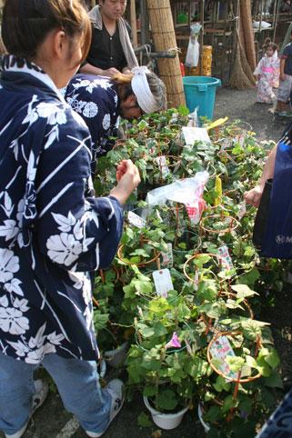 花ギフト フラワーギフト 誕生日 花 カノシェ話題 スタンド花 ウエディングブーケ 花束 花屋 ねーさん