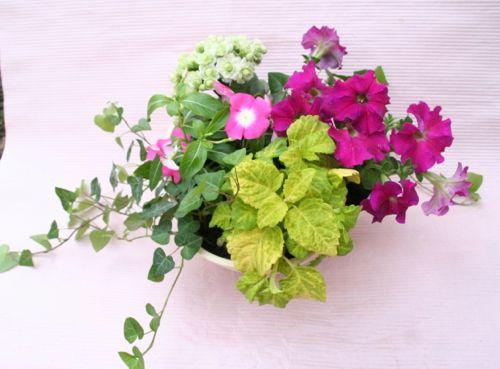 花ギフト|フラワーギフト|誕生日 花|カノシェ話題|スタンド花|ウエディングブーケ|花束|花屋|IMG_0305