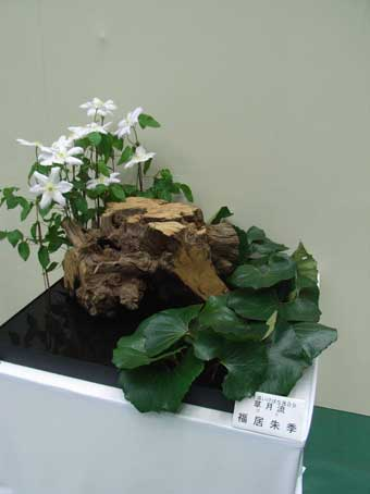 花ギフト|フラワーギフト|誕生日 花|カノシェ話題|スタンド花|ウエディングブーケ|花束|花屋|草月