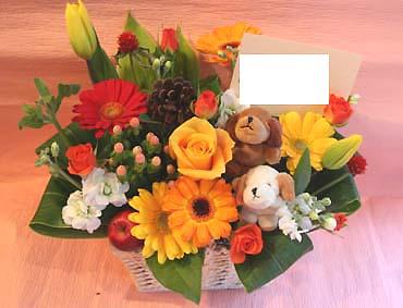 花ギフト フラワーギフト 誕生日 花 カノシェ話題 スタンド花 ウエディングブーケ 花束 花屋 わん2
