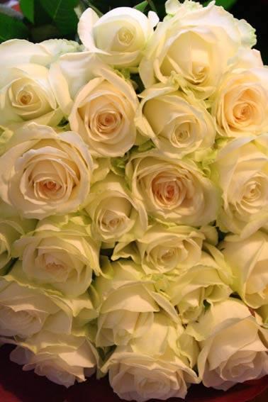 花ギフト|フラワーギフト|誕生日 花|カノシェ話題|スタンド花|ウエディングブーケ|花束|花屋|15527_761366547303974_3381456831880630771_n