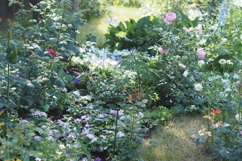 花ギフト|フラワーギフト|誕生日 花|カノシェ話題|スタンド花|ウエディングブーケ|花束|花屋|P6102982
