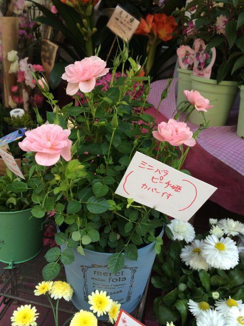 花ギフト|フラワーギフト|誕生日 花|カノシェ話題|スタンド花|ウエディングブーケ|花束|花屋|IMG_4142