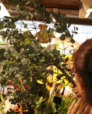 花ギフト|フラワーギフト|誕生日 花|カノシェ話題|スタンド花|ウエディングブーケ|花束|花屋|ユーカリ