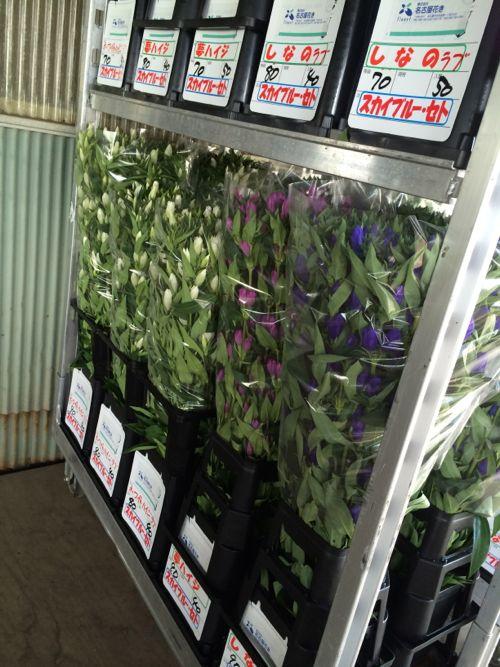 花ギフト|フラワーギフト|誕生日 花|カノシェ話題|スタンド花|ウエディングブーケ|花束|花屋|IMG_6670