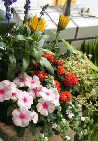 花ギフト|フラワーギフト|誕生日 花|カノシェ話題|スタンド花|ウエディングブーケ|花束|花屋|寄せ植え