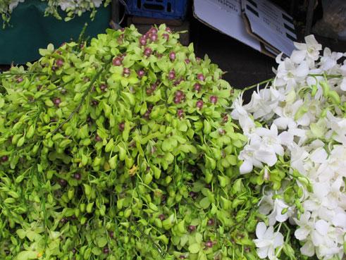 花ギフト|フラワーギフト|誕生日 花|カノシェ話題|スタンド花|ウエディングブーケ|花束|花屋|_蘭3