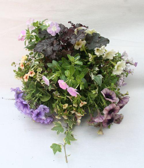 花ギフト|フラワーギフト|誕生日 花|カノシェ話題|スタンド花|ウエディングブーケ|花束|花屋|てらぶんさん
