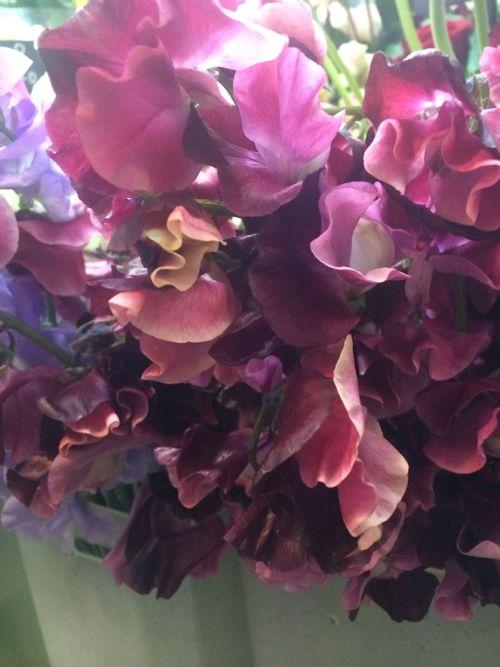 花ギフト|フラワーギフト|誕生日 花|カノシェ話題|スタンド花|ウエディングブーケ|花束|花屋|IMG_4059