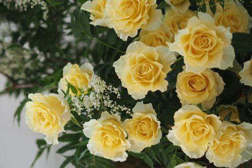 花ギフト|フラワーギフト|誕生日 花|カノシェ話題|スタンド花|ウエディングブーケ|花束|花屋|P6103030