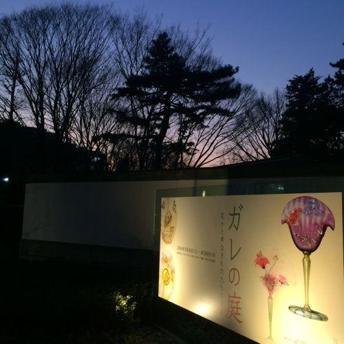 花ギフト|フラワーギフト|誕生日 花|カノシェ話題|スタンド花|ウエディングブーケ|花束|花屋|IMG_9096