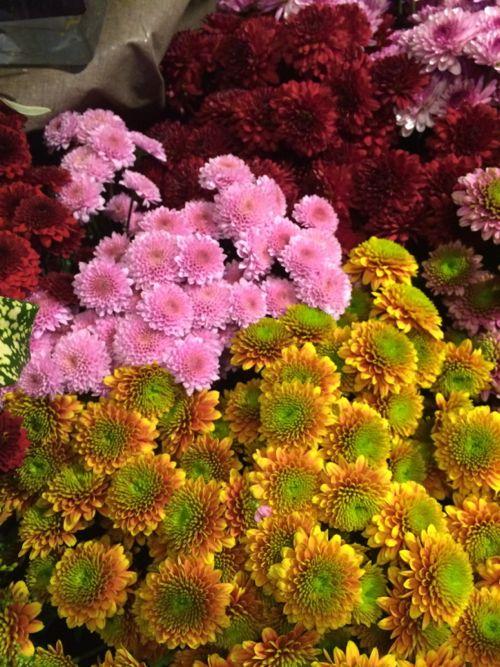 花ギフト|フラワーギフト|誕生日 花|カノシェ話題|スタンド花|ウエディングブーケ|花束|花屋|IMG_3943