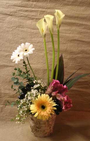 花ギフト|フラワーギフト|誕生日 花|カノシェ話題|スタンド花|ウエディングブーケ|花束|花屋|小春さん