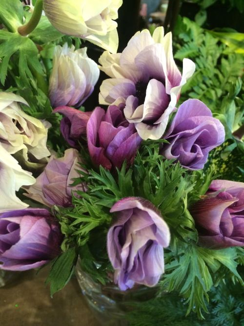 花ギフト|フラワーギフト|誕生日 花|カノシェ話題|スタンド花|ウエディングブーケ|花束|花屋|IMG_8864