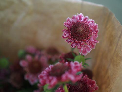 花ギフト|フラワーギフト|誕生日 花|カノシェ話題|スタンド花|ウエディングブーケ|花束|花屋|P1010014