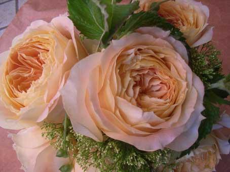 花ギフト|フラワーギフト|誕生日 花|カノシェ話題|スタンド花|ウエディングブーケ|花束|花屋|キャラメル1
