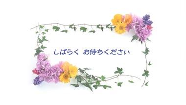 新潟 放送事故テレビ 画像