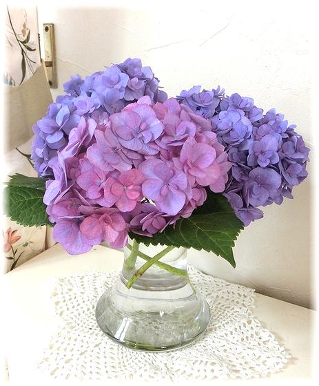 紫陽花切り花