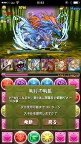 IMG_9536