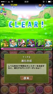 IMG_2940