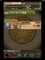 IMG_2238