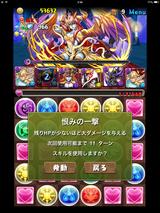 IMG_2531