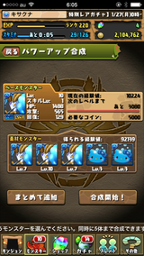 IMG_9004