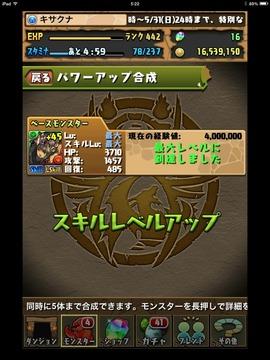 IMG_4641