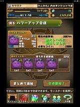 IMG_2755