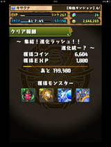 IMG_2462
