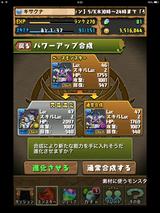 IMG_2589