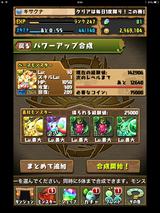 IMG_2213