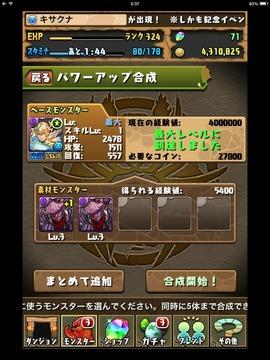 IMG_3213