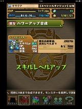 IMG_2420