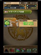 IMG_2425