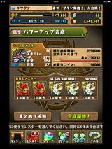 IMG_2451