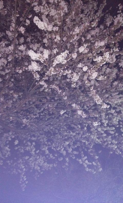 2015-03-30-21-51-55_photo