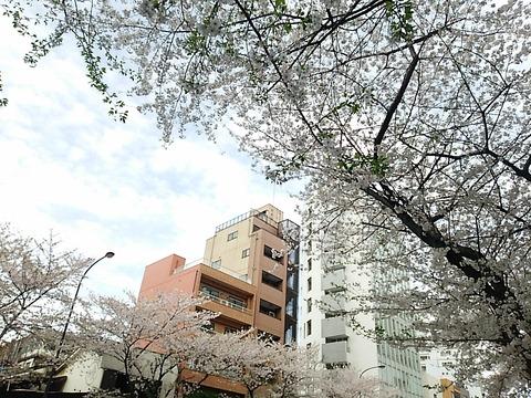 16-04-04-14-48-19-650_photo