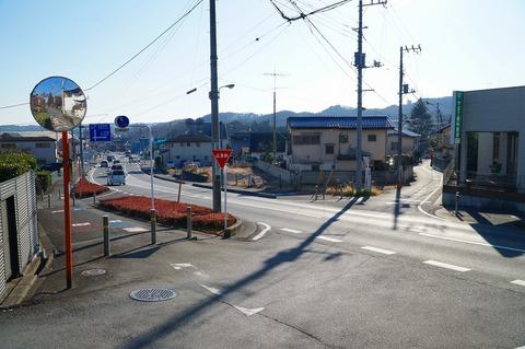天覧山駅遊歩道 (7)
