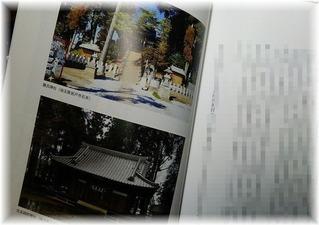 千鹿野家系譜考察 (2)