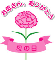 carnation02
