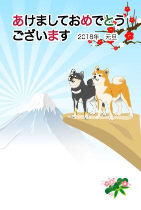 柴犬ペア02