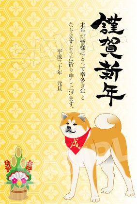 秋田犬01