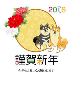 柴犬ペア03