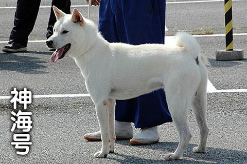20110925神海