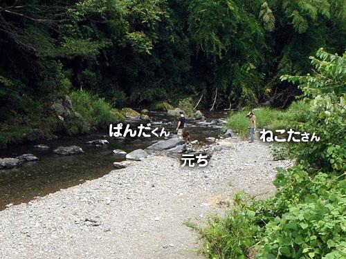 38bd77c9.jpg