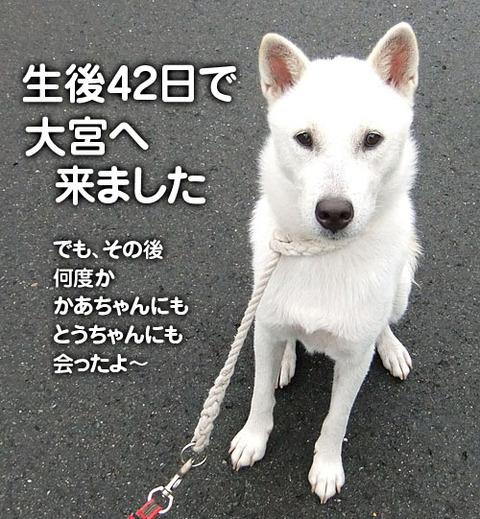2011082501