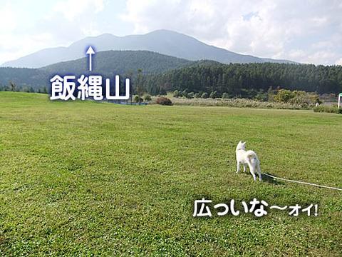 2010100902
